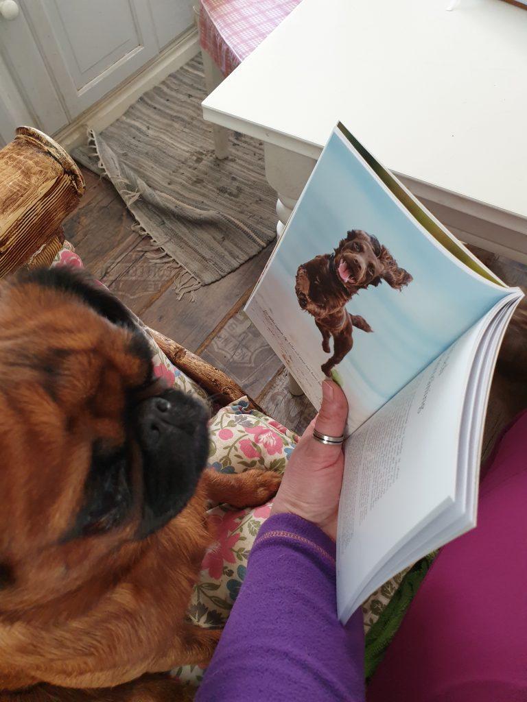 Ingela och griffisarna_Ingela och hund läser