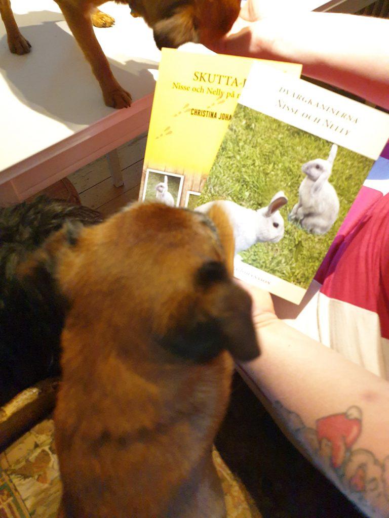 Herbert tillsammans med böcker och sina hundkompisar